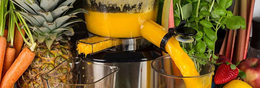 Types d'extracteurs de jus