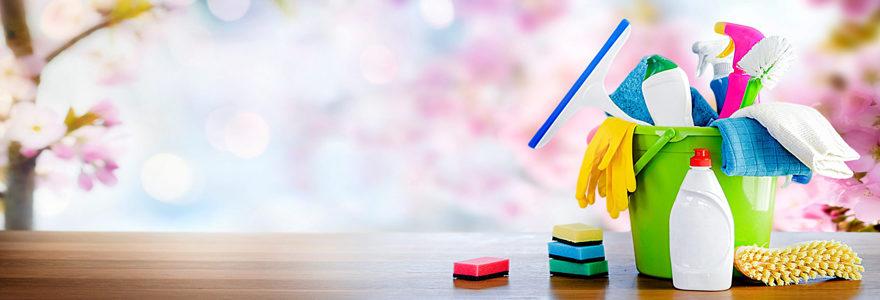 Services de ménage à domicile